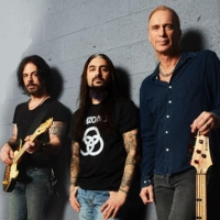 WINERY DOGS, THE title=